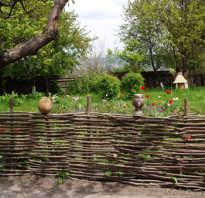 Плетеные заборы из дерева
